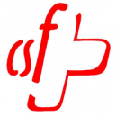 CSF.png